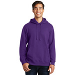 Adult Fan Favorite Hooded Sweatshirt